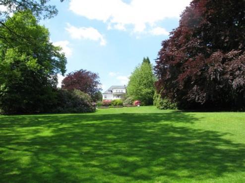 Rasenfläche hinter der Vorwerk-Villa