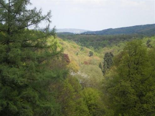 Fernblick über den Barmer Wald nach Schwelm
